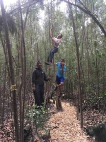 Olyfkraans_volunteers_climbing