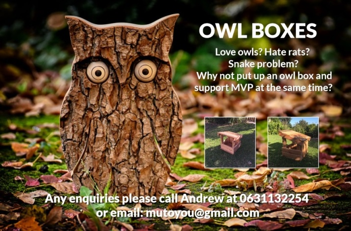 Owl Box Project