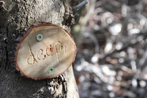 Tree_poetry