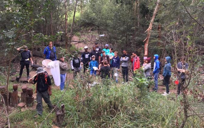 Grootbos entomologists' workshop