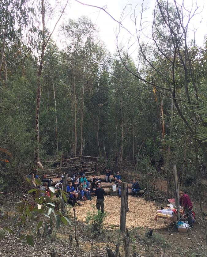 Nature workshop